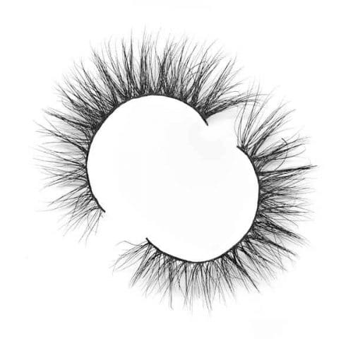 SN24 START YOUR OWN EYELASH BUSINESS
